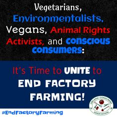 Repin if you agree: It's time to stop fighting among ourselves. We need to join together to achieve our common goal. It's time to #EndFactoryFarming! Learn more here: http://orgcns.org/1G7jWYA