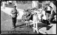 Foto antigua vendedor de verduras y cenachero MÁLAGA