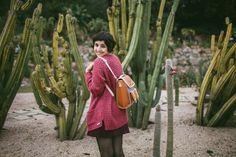 Cactus - The cat, yo