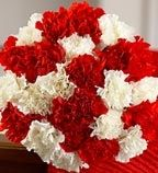 Flowers Buds Product Description 6 Red + 6 White Carnations Hand Bouquet http://www.flowersbuds.com/flowers/