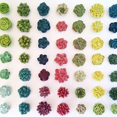 Eat Cake Be Merry buttercream succulents.Need to learn how to make these Buttercream Flowers Tutorial, Korean Buttercream Flower, Frosting Flowers, Buttercream Flower Cake, Buttercream Recipe, Cake Decorating Tips, Cookie Decorating, Succulent Cupcakes, Cactus Cake
