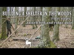 Building a Shelter in the woods. First steps: raised bed and ridge pole Ridge Pole, Shelters In The Woods, Bushcraft Skills, Raised Beds, Survival Tips, First Step, Wilderness, Nature, Youtube
