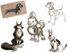 Sketch Gallery by Toni Reyna, via Behance || CHARACTER DESIGN REFERENCES | Find more at https://www.facebook.com/CharacterDesignReferences if you're looking for: #line #art #character #design #model #sheet #illustration #best #concept #animation #drawing #archive #library #reference #anatomy #traditional #draw #development #artist #how #to #tutorial #conceptart #modelsheet #animal #animals #dog #wolf #fox #dogs