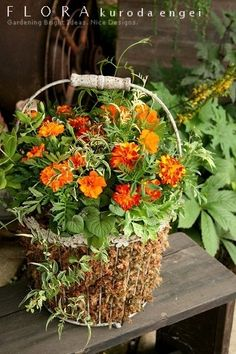 Gallery -夏の寄せ植え-|フローラ黒田園芸| Flora Design, Silk Floral Arrangements, Rustic Gardens, Container Flowers, Garden Accessories, Summer Garden, Houseplants, Garden Pots, Container Gardening