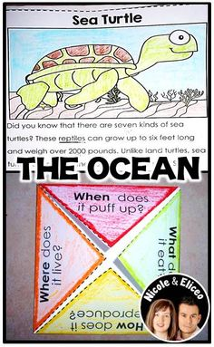 Fun close reading passages about ocean animals with interactive notebook activities in English & Spanish!