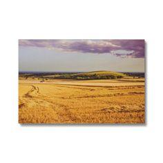 Downland Harvest Canvas – Trigger Image Buy Prints, Us Images, Stretcher Bars, Canvas Material, Printing Process, Cotton Canvas, Harvest, Canvas Art, Fine Art