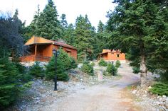 See 3 photos from 19 visitors to Natureart Paranesti. Forest Village, Tree Forest, Greek Flowers, Forest Mountain, Flowering Trees, Greece, Cabin, Mountains, Landscape