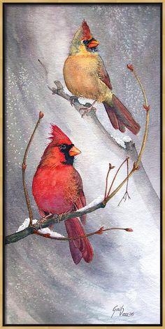 Cardinals Canvas Print featuring the painting Cardinals by Gail Vass Watercolor Bird, Watercolor Paintings, Watercolors, Cardinal Birds, Cardinal Glass, Bird Drawings, Drawing Birds, Pics Art, Beautiful Birds