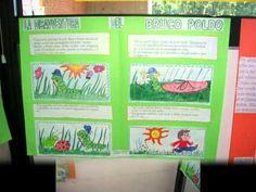 Mostra del ricilaggio in una scuola elementare. La Scuola Primaria Pertini (Canzone in italiano e tedesco).