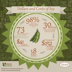 Dollars and Cents of Soy