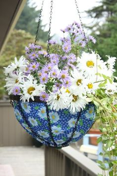 Toland Home Garden Daisy 14Inch 2Gallon Decorative Insulated Hanging Art Planter Basket 202038 * For more information, visit image link.