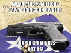 Punish the criminals, NOT the law-abiders!