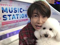Johnny's Web, Ninomiya Kazunari, Music Station, My Images, Boy Bands, Drama, Shit Happens, Guys, Animals