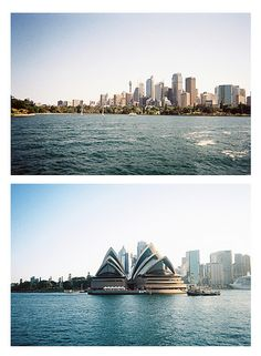 Sydney Harbour // disposable camera