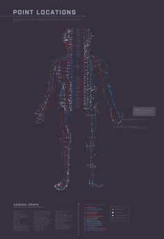 acupuncture 101 by angel b lee, via Behance