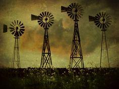 windmill farm in west Texas