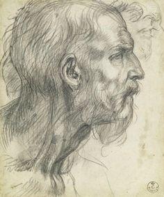 Andrea del Sarto (1486–1530),  Study of a Bearded Man in Profile, ca. 1526–27. Black chalk, possibly with gray wash, 8 9/16 x 7 1/8 in. (21.8 x 18.1 cm). Galleria degli Uffizi, Gabinetto Disegni e Stampe, Florence. Courtesy the Ministero dei beni e delle attività culturali e del turismo