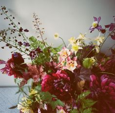 The Farmer and the {Florist} Interview: Sarah Winward of Honey of a Thousand Flowers - Floret Flowers