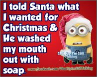 I Told Santa What I Wanted For Christmas And He Washed My Mouth Out With Soap funny funny quote funny quotes humor christmas minion minions christmas quotes funny christmas quotes minion quotes minion images quotes for christmas christmas minion Merry Christmas Quotes, Naughty Christmas, Christmas Greetings Quotes Funny, Naughty Santa, Christmas Postcards, Xmas Cards, Greeting Cards, Minion Jokes, Minions Quotes