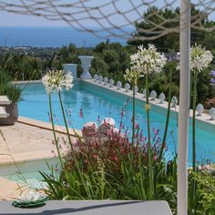 Located on the hills of Polignano a Mare, just 3km from the well known seaside village, this charming villa is immersed in a Mediterranean style garden