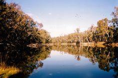 The Murrumbidgee River at Brewery Bend, Hay, NSW
