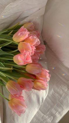 Flower Aesthetic, Pink Aesthetic, My Flower, Beautiful Flowers, Flower Wall, Beautiful Flower Arrangements, Photo Polaroid, No Rain, New Wall