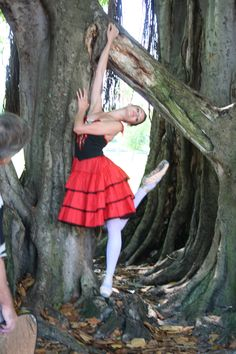 Ballerina and a tree - Photo shoot in St Petersburg FL with photographer Stacey Stormes