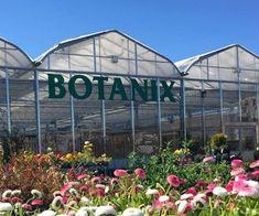 Gagnez une des 5 carte-cadeaux Botanix de 100$ Free Samples, Free Stuff, Gifts