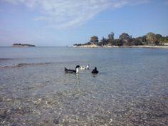 Deniz keyfi