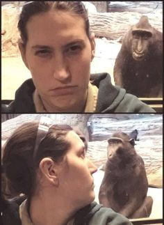 Clever photo-bombing monkey. Omg that monkey freaks me out