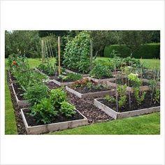 Raised Vegetable Garden Beds Can Be A Great Gardening Option Potager Garden, Veg Garden, Vegetable Garden Design, Garden Landscape Design, Garden Boxes, Garden Cottage, Garden Landscaping, Vegetable Gardening, Garden Ideas