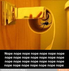 .... And I will be obsessively checking all toilet paper rolls. Can't. Unsee.