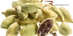 Ripples Commodity Blog: Cardamom Futures Dip On Subdues Demand - Today Car...