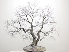 Copper wire tree - Bonsai style - Natural rock - recycled material - Wabi sabi - The Dancers
