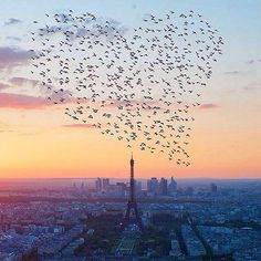 Follow @globe_hd for more awesome photos.  Photo by @nois7.  Location: Paris, France.  Tag: #lifeonourplanet