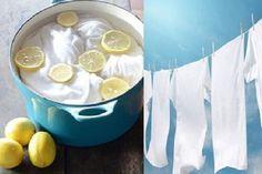 Per un bucato perfetto, bianco e senza aloni provare l'azione sbiancante e disinfettante del limone unito alla forza del bicarbonato, dell'aceto e del sale.