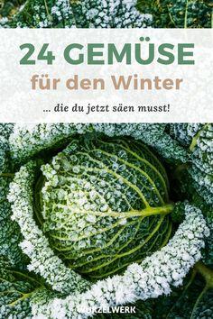 Green Garden, Garden Plants, Growing Veggies, Outdoor, Gardening, Farmhouse Garden, Planting Vegetables, Woodland Garden, Outdoors
