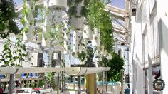 Green Sky Growers WInter Garden, FL by Pentair Aquatic Eco-Systems