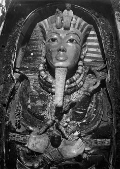 While most people know him as his more colloquially familiar name King Tut, King Tutankhamun is unarguably one of the most famous of the ancient Egyptian pharaohs. Egyptian Kings, Egyptian Pharaohs, Ancient Egyptian Art, Ancient Ruins, Ancient History, King Tut Tomb, Old Egypt, Archaeological Discoveries, Valley Of The Kings