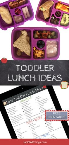A complete list of school lunch ideas for kids! (Even for the picky eater!) Read more for quick and easy ideas on what to pack for lunch for preschool or daycare. Includes cold (no heat) lunches, hot and thermos lunches, sandwich and non-sandwich options, Easy Toddler Lunches, Easy School Lunches, Toddler Dinners, School Fun, No Heat Lunch, Kindergarten Lunch, Preschool Lunch Ideas, Lunch Ideas For Toddlers, Picky Eaters Kids