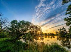 Jezioro, Drzewa, Trawy, Wschód, Słońca