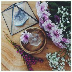 morado, beautiful, and flower image