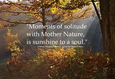 "☆☆☆☆ ""Moments of solitude with Mother Nature is sunshine to a soul."" ~ A.D. Williams"