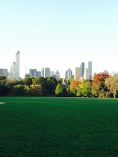 Fall in NYC. The babe and I are gna mk a trip here one day.... Finally talked him into it!