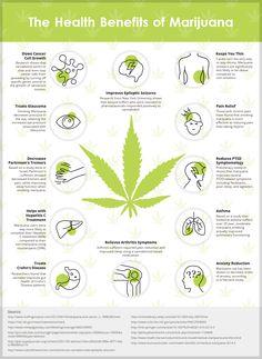 Heath Benefits Of Marijuana Infographic
