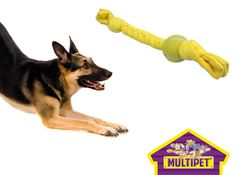 Throw In The Towel Tennis Ball Dog Toy on Sale Today w/ Free Shipping @ www.Coupaw.com