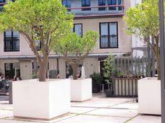 #terraza #laranxeiras #odelito