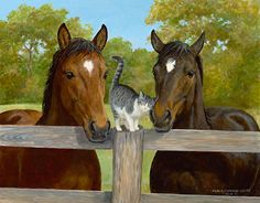 Greetings-Sheep & Cats Painting; Weirs | Wild Wings