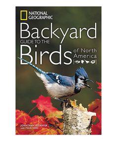 Sandra Bullock's 'Bird Box' inspired by Detroiter's terrifying book