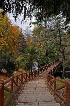 Retiro Park . Madrid . Spain